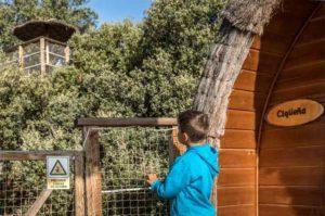 Cabañas en los árboles Madrid que hacer con niños en Madrid