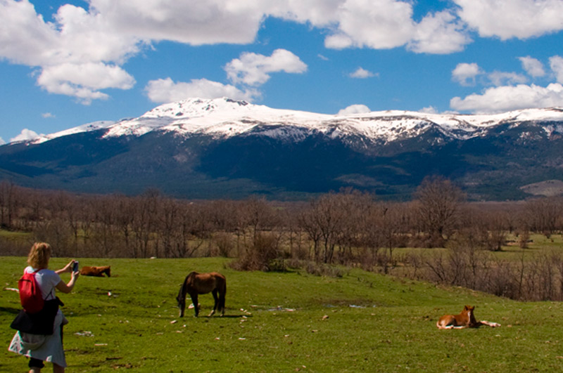 Sierra Norte de Madrid