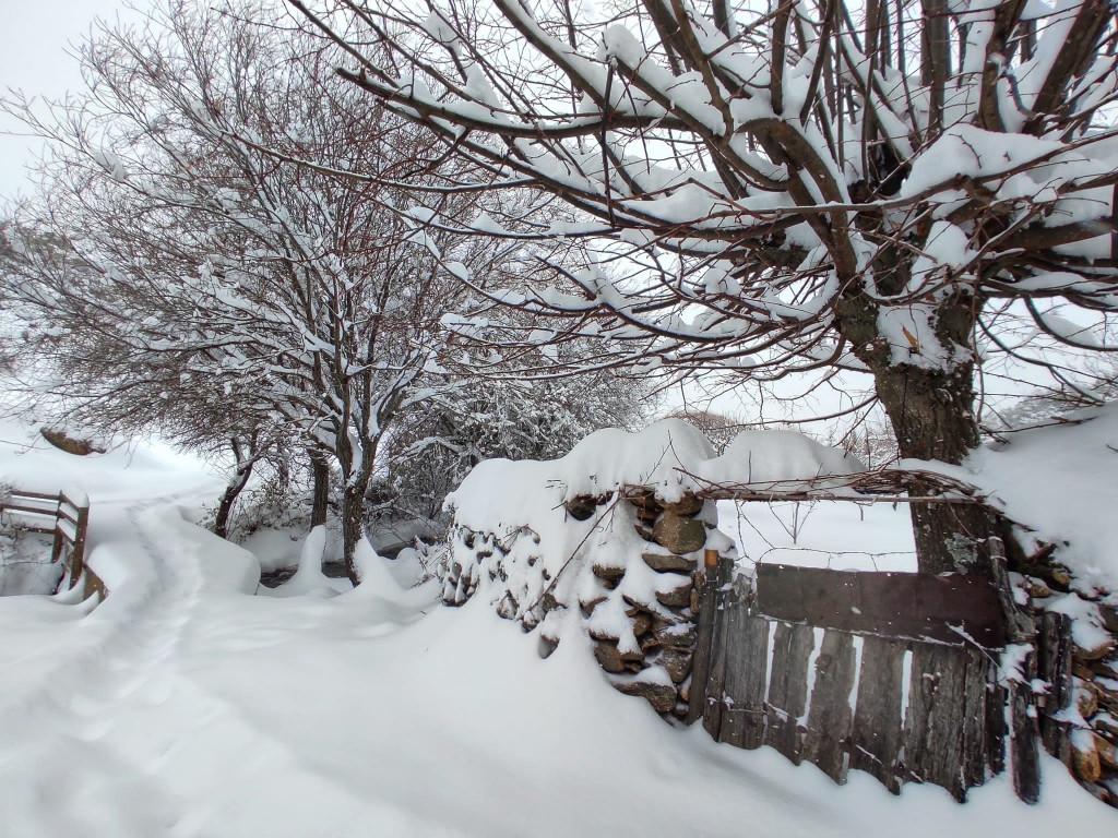 nieve en la sierra norte